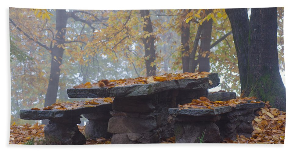 Bench Beach Towel featuring the photograph Benches And Table In Autumn by Mats Silvan