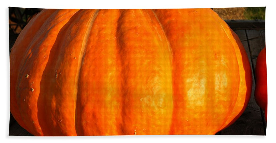 Food And Beverage Beach Towel featuring the photograph Big Orange Pumpkin by LeeAnn McLaneGoetz McLaneGoetzStudioLLCcom