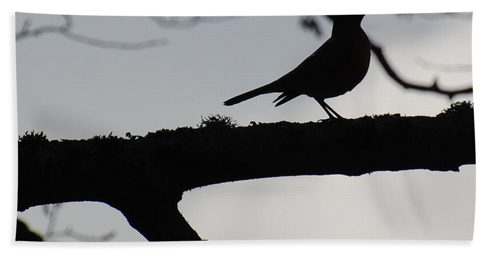 Silhouette Beach Towel featuring the photograph Bird At Dusk by Tara Ellis