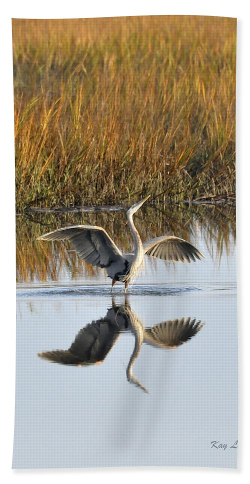 Great Blue Heron Beach Towel featuring the photograph Bird Dance by Kay Lovingood