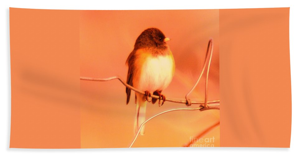Birds Beach Towel featuring the photograph Bird On A Wire by Jeff Swan