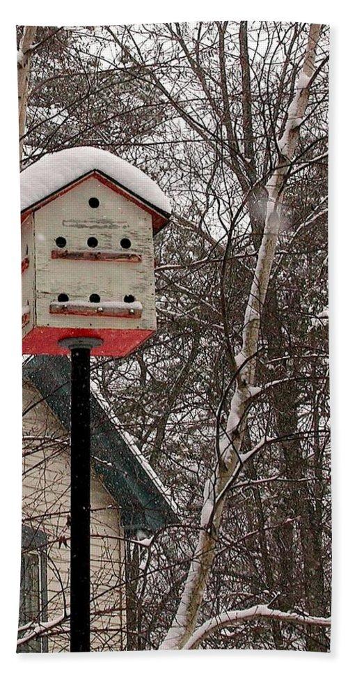 Birdhouse Beach Towel featuring the photograph Birdhouse by Anna Ruzsan
