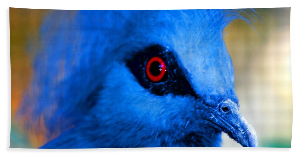 Zoo Beach Towel featuring the photograph Bird's Eye View by Tap On Photo