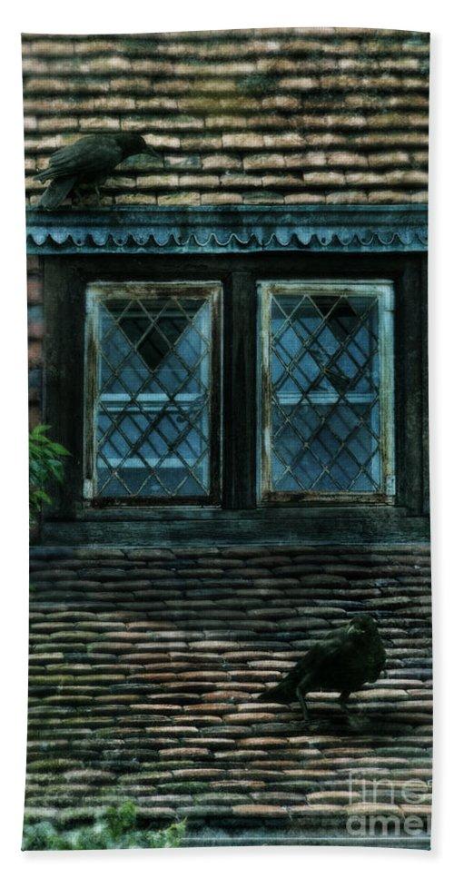 Black Bird Beach Towel featuring the photograph Black Birds Sitting On Roof By Window by Jill Battaglia