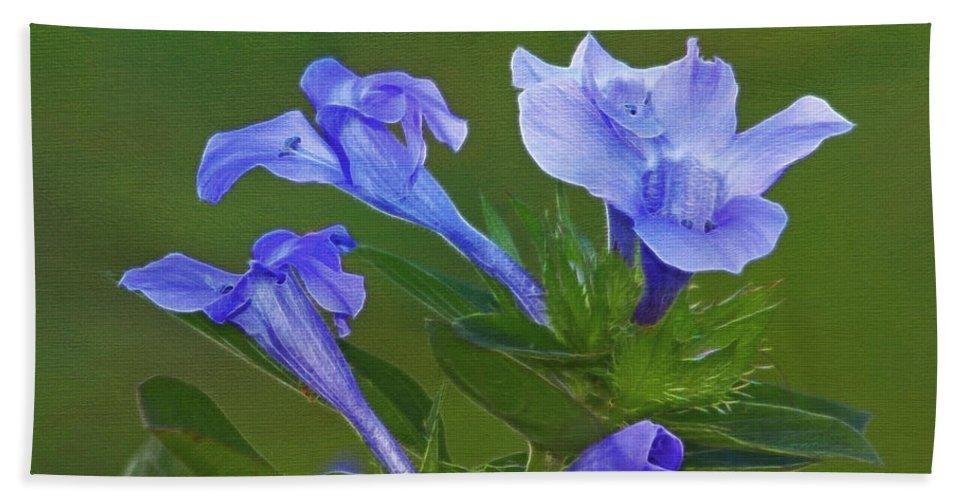Flowers Beach Towel featuring the photograph Blue On Green by Deborah Benoit