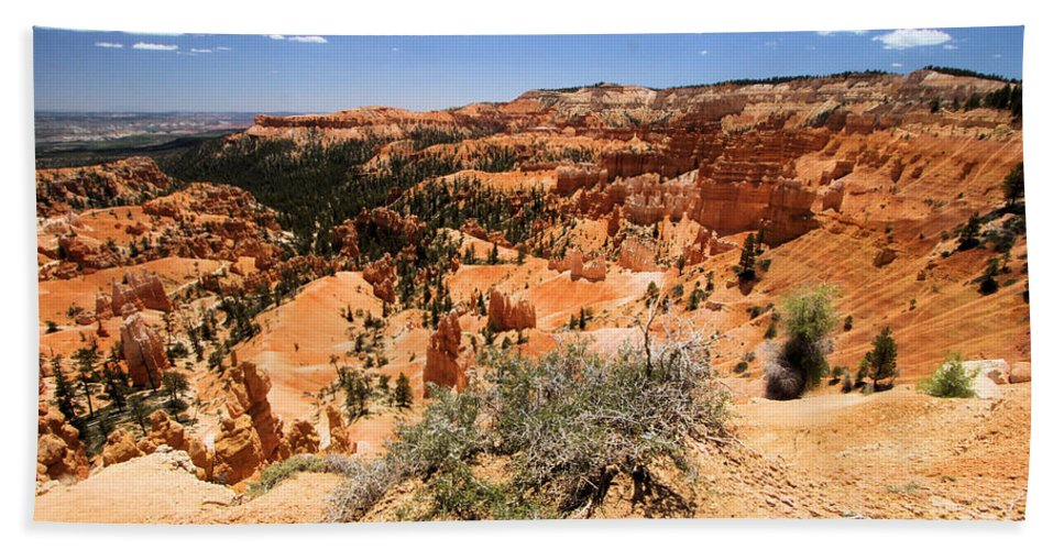 Bryce Canyon National Park Beach Towel featuring the photograph Bryce Canyon Overlook by Adam Jewell