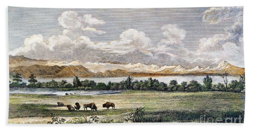 19th Century Beach Towel featuring the photograph Buffalo, 19th Century by Granger