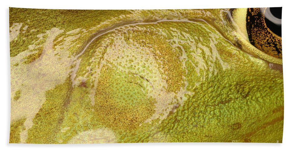 Animal Beach Towel featuring the photograph Bullfrog Ear by Ted Kinsman