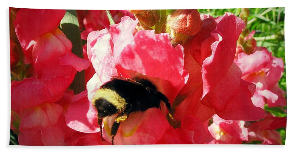 Floral Beach Towel featuring the photograph Bumblebee And Snapdragon by Joyce Dickens