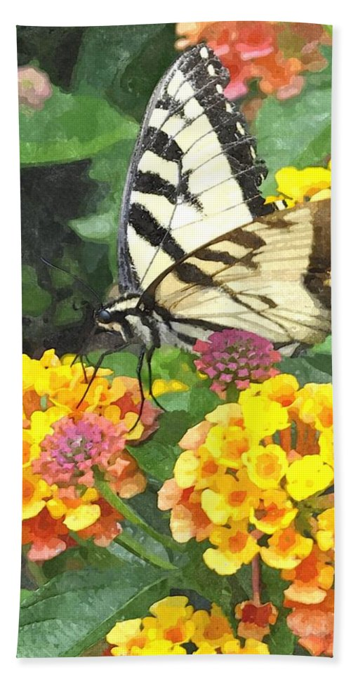 Butterfly Beach Towel featuring the digital art Butterfly Dining Bdwc by Jim Brage