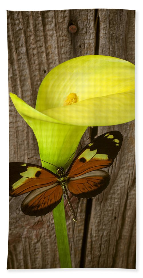 Yellow Beach Towel featuring the photograph Butterfly With Calla Lily by Garry Gay