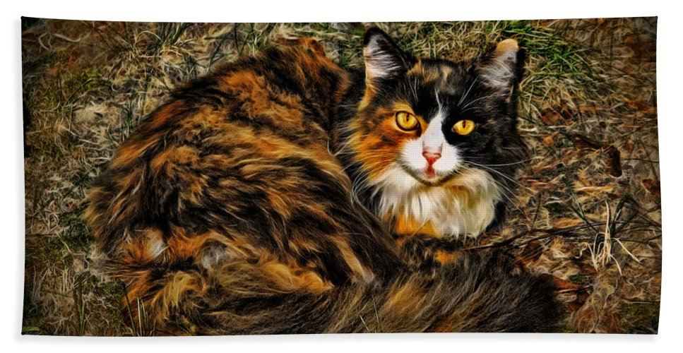 Calico Cat Beach Towel featuring the photograph Calico Cat by Joan Minchak