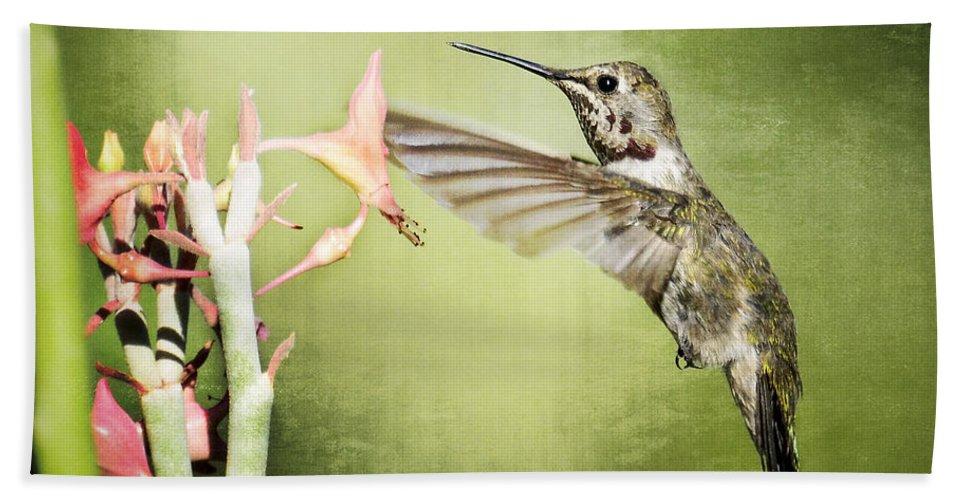 Calliope Hummingbird Beach Towel featuring the photograph Calliope Hummingbird by Saija Lehtonen