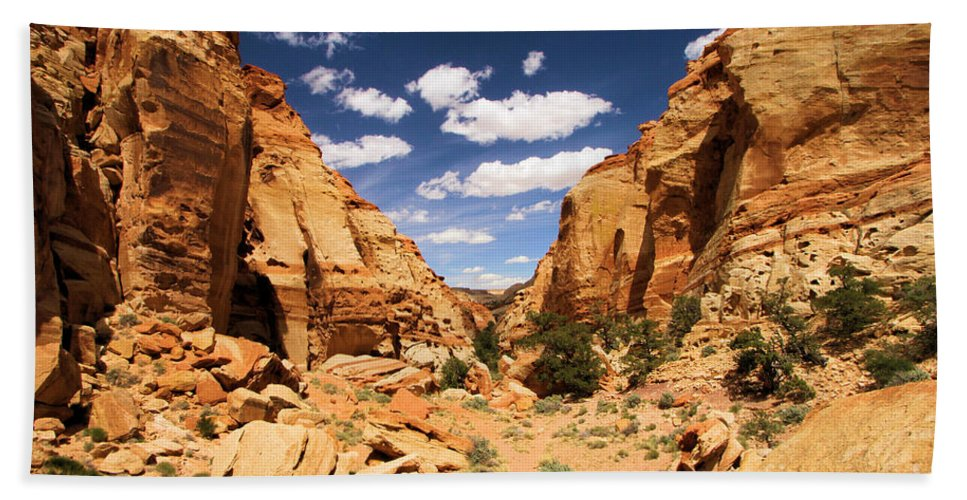Capitol Reef National Park Beach Towel featuring the photograph Capitol Reef Cohab Canyon by Adam Jewell
