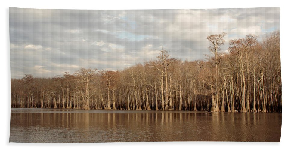 Baldcypress Beach Towel featuring the photograph Champion Lake by Daniel Reed