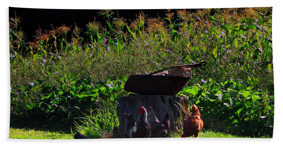 Wisconsin Landscape Beach Towel featuring the photograph Chickens Of The Corn by Ms Judi