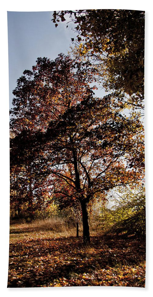 Autumn Beach Towel featuring the photograph Chinbrook Meadows by Dawn OConnor