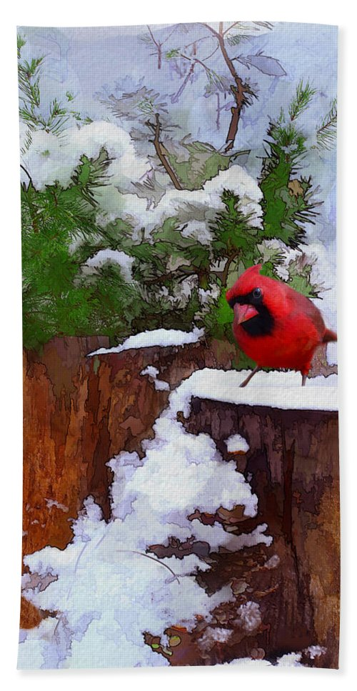Christmas Beach Towel featuring the photograph Christmas Guest by Ron Jones