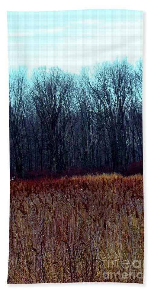 Red Beach Towel featuring the photograph Cinnamon Fields by Art Dingo