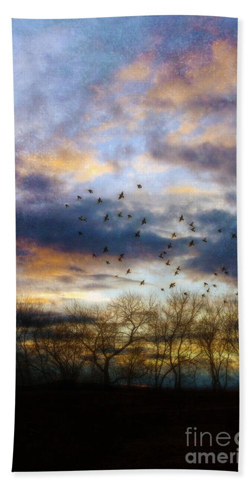 Sunset Beach Towel featuring the photograph Cloudy Sunset With Bare Trees And Birds Flying by Jill Battaglia