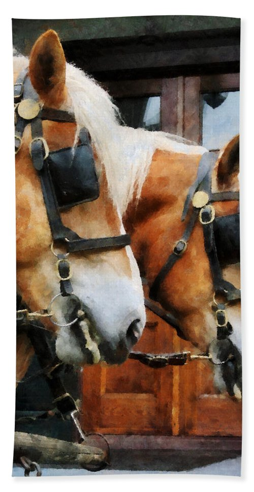 Horse Beach Towel featuring the photograph Clydesdale Closeup by Susan Savad