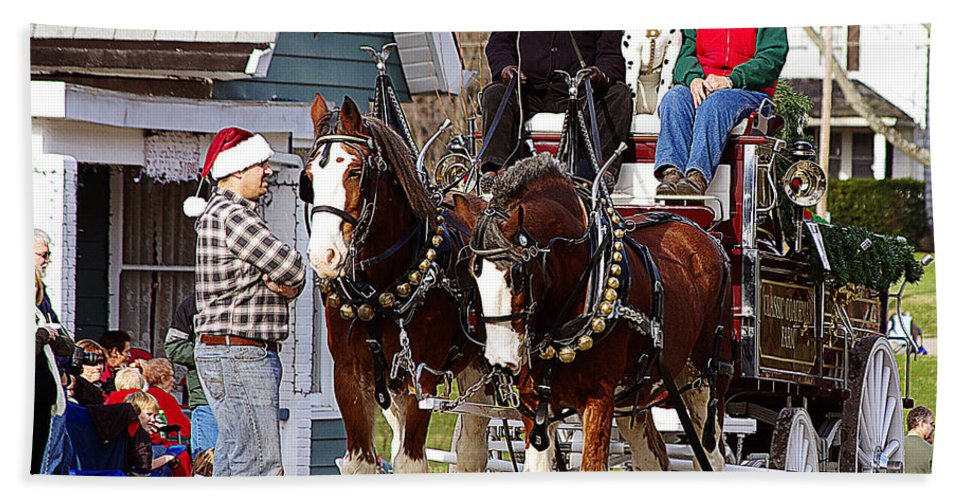 Horses Beach Towel featuring the photograph Clydesdales by Jenny Gandert