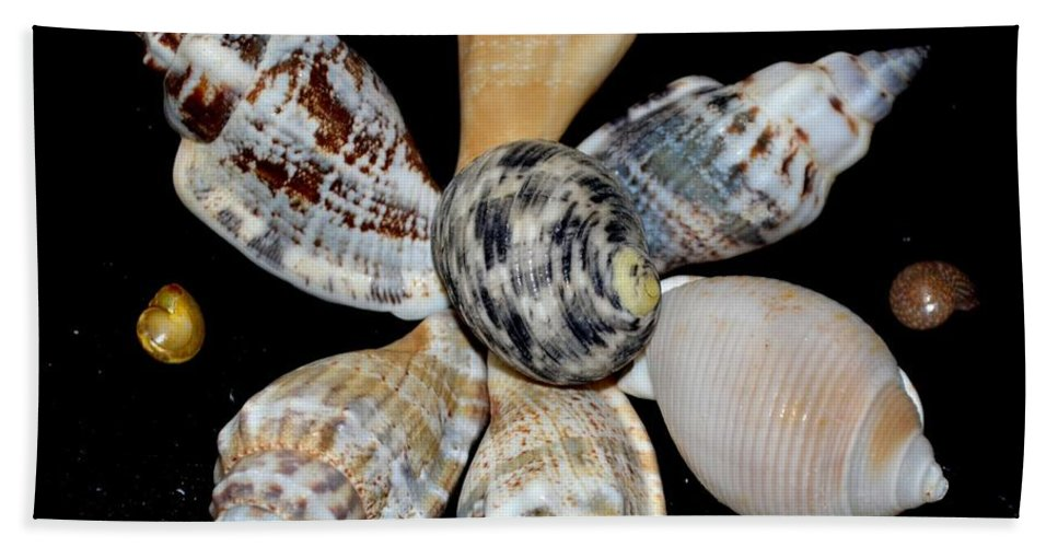 Colored Beach Towel featuring the photograph Colored Seashells by Maria Urso