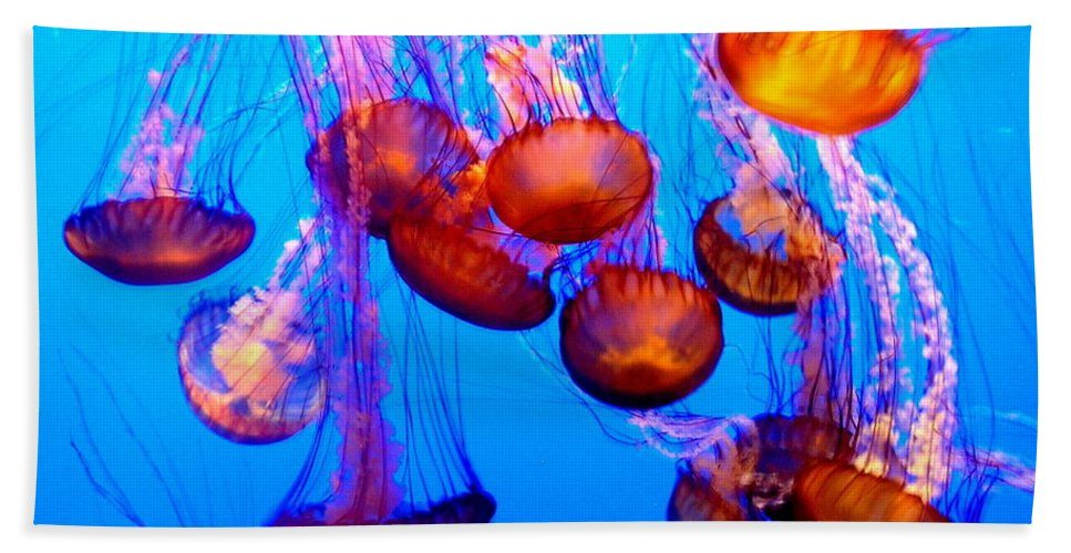 Jelly Fish Beach Towel featuring the photograph Colorful Jellies by Ellen Heaverlo