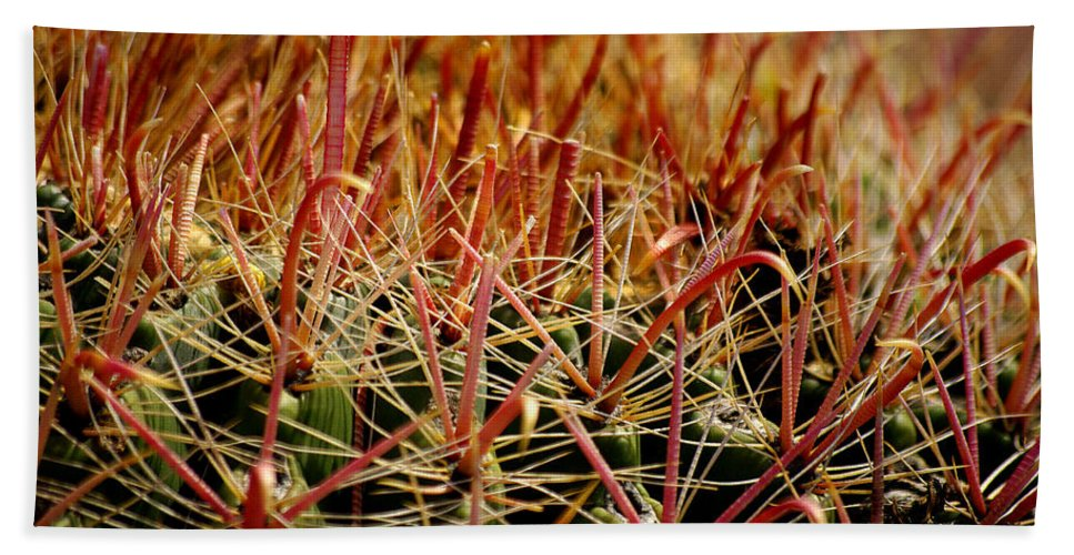 Cactus Beach Towel featuring the photograph Complexity Of Nature by Vicki Pelham