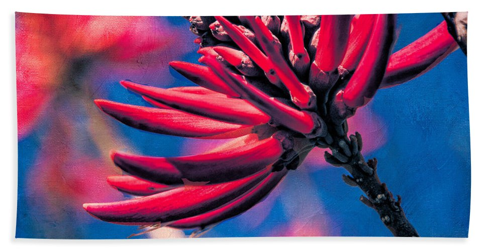 Floral Beach Towel featuring the photograph Coral Tree Flower by Chris Lord
