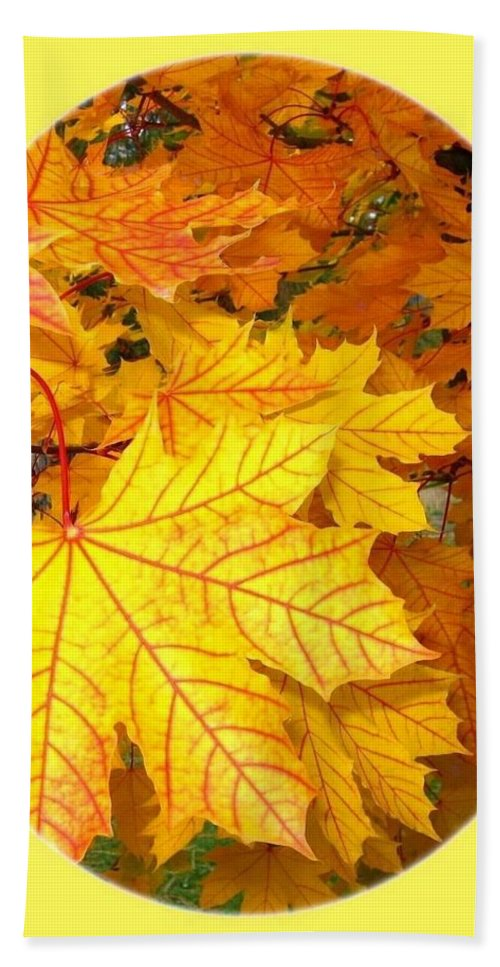 Autumn Beach Towel featuring the photograph Country Color 18 by Will Borden