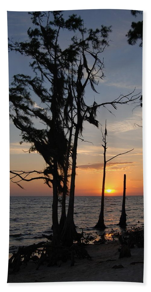 Cypress Beach Towel featuring the photograph Cypress Sunset by Beth Gates-Sully