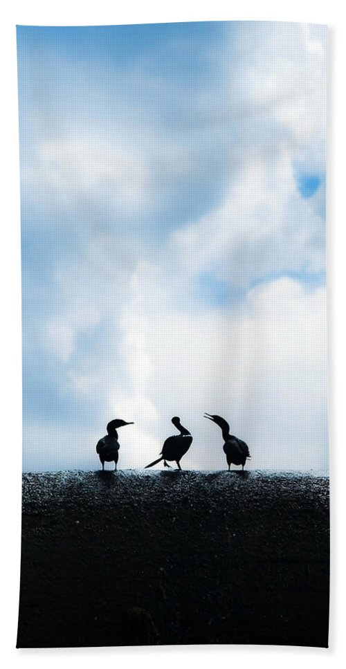 Birds Beach Towel featuring the photograph Dam Ducks by Beth Riser