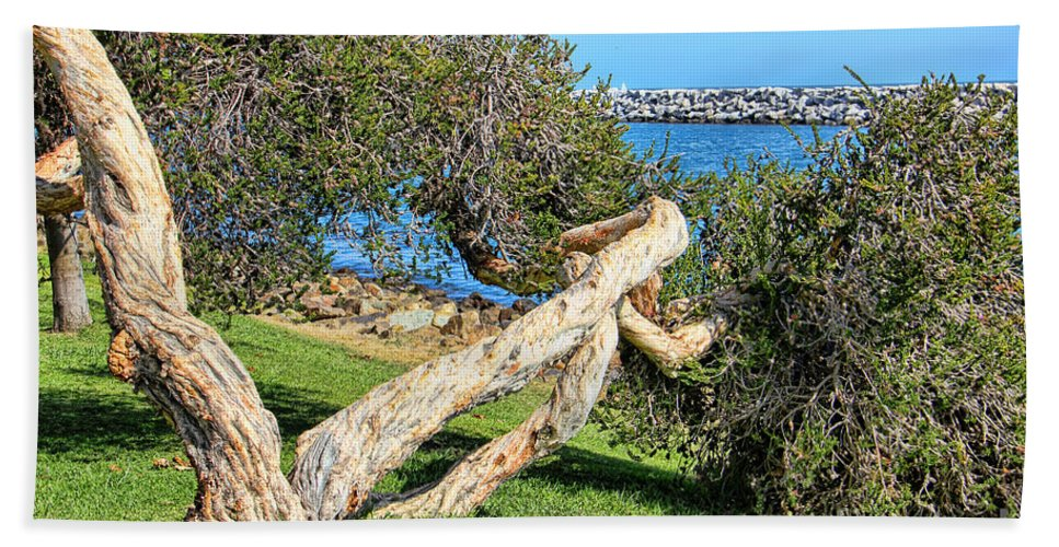 Dana Point Beach Towel featuring the photograph Dana Point Harbor Channel by Mariola Bitner