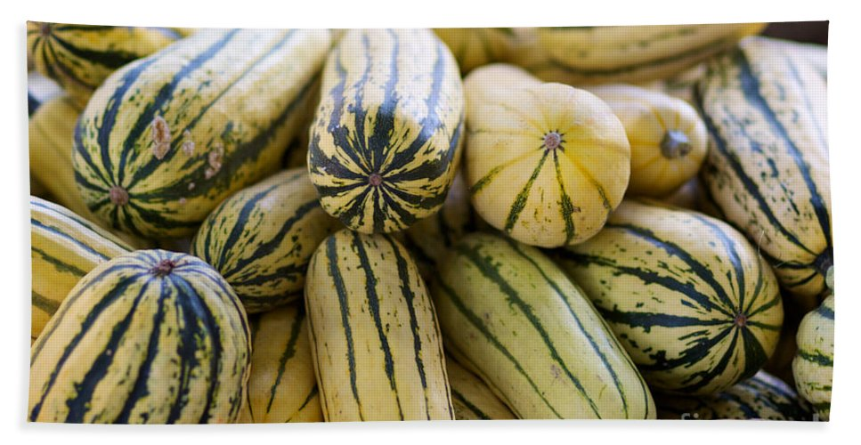 Delicata Beach Towel featuring the photograph Delicata Winter Squash by Brooke Roby
