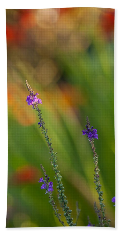Flower Beach Towel featuring the photograph Delicate And Vivid by Mike Reid