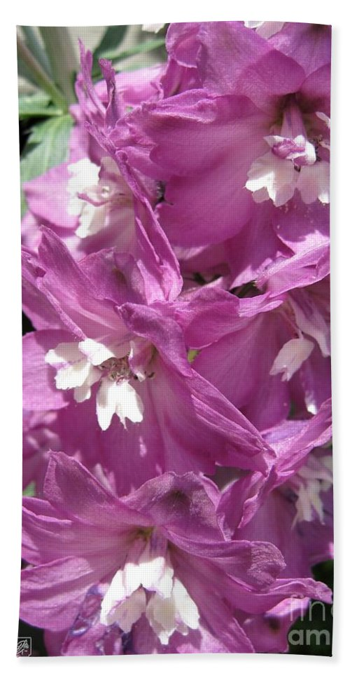Delphinium Beach Towel featuring the photograph Delphinium Named Magic Fountains Lilac Pink by J McCombie