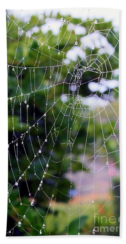 Dewdrops On Spider Web Beach Towel featuring the photograph Dewdrops Dimension by Carol Groenen
