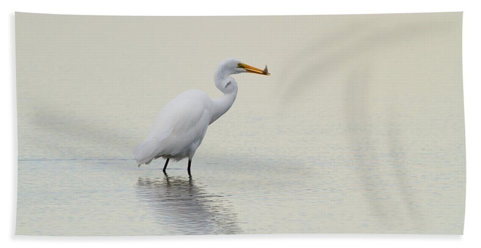 Egret Beach Towel featuring the photograph Dinner To Go by Karol Livote