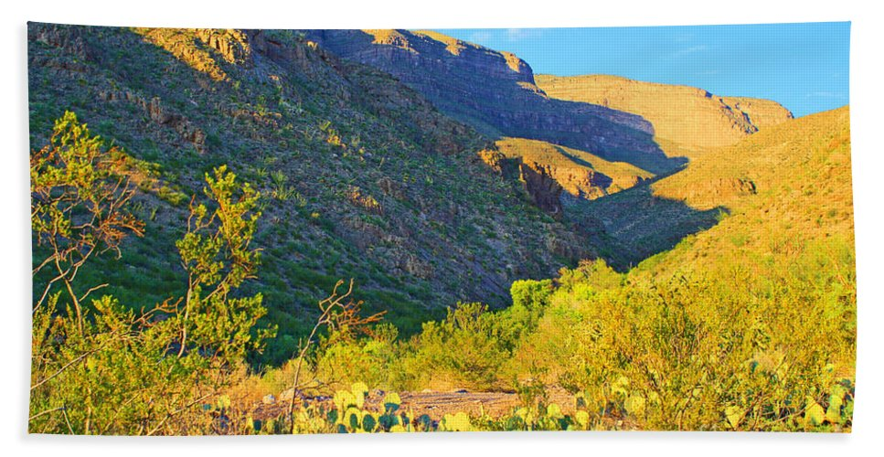 Roena King Beach Towel featuring the photograph Dog Canyon Nm Oliver Lee Memorial State Park by Roena King
