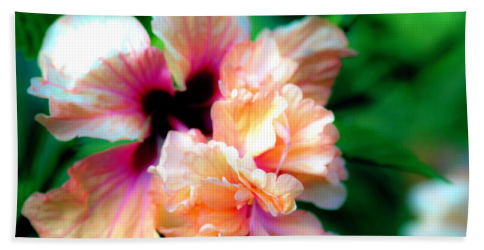 Hibiscus Beach Towel featuring the photograph Double Peach Hibiscus Five by Ken Frischkorn