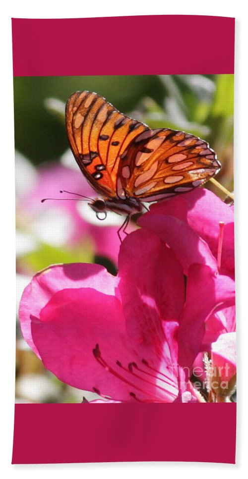 Butterfly Beach Towel featuring the photograph Dreaming Of Butterflies And Pink Flowers by Carol Groenen