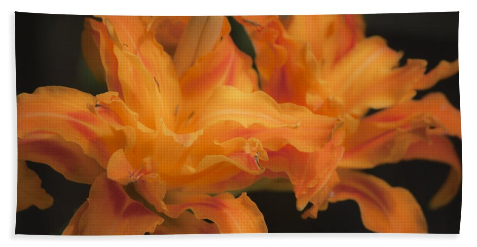 Daylily Beach Towel featuring the photograph Dreamy Kwanso Daylily Pair by Teresa Mucha