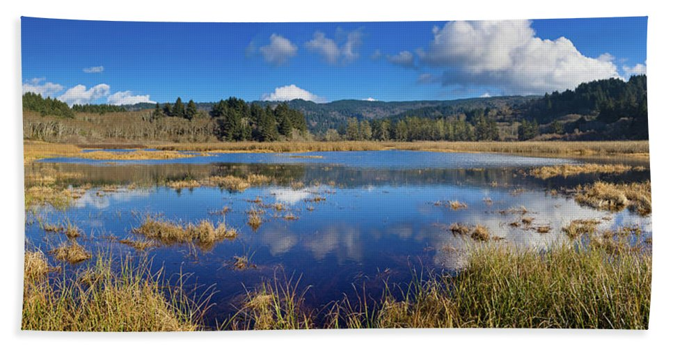 Landscape Beach Towel featuring the photograph Dry Lagoon Panorama by Greg Nyquist