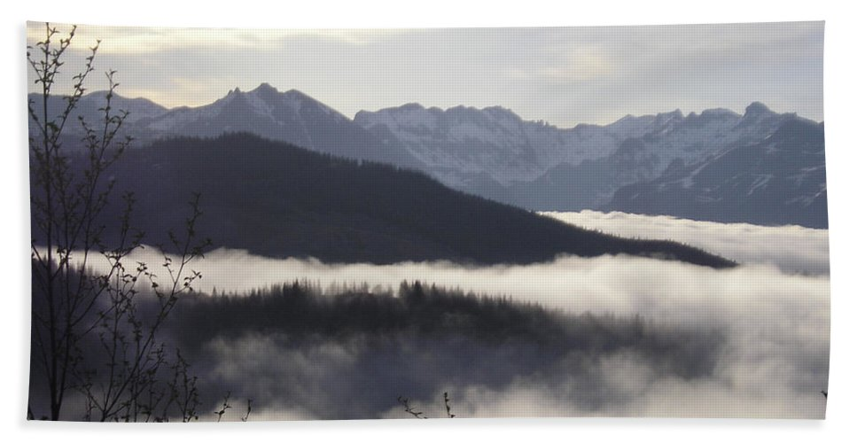 Fog Beach Towel featuring the photograph Early Morning Fog by Catherine Helmick