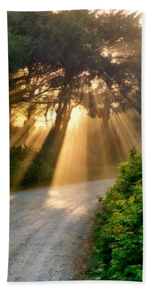 Outdoors Beach Towel featuring the photograph Early Morning Sunlight by Michelle Calkins