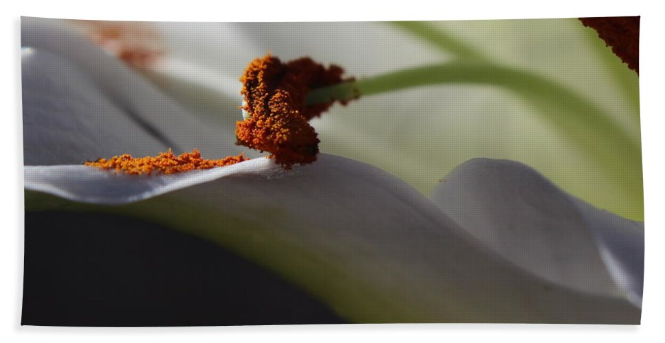 Floral Beach Towel featuring the photograph Easter Lily by Kume Bryant