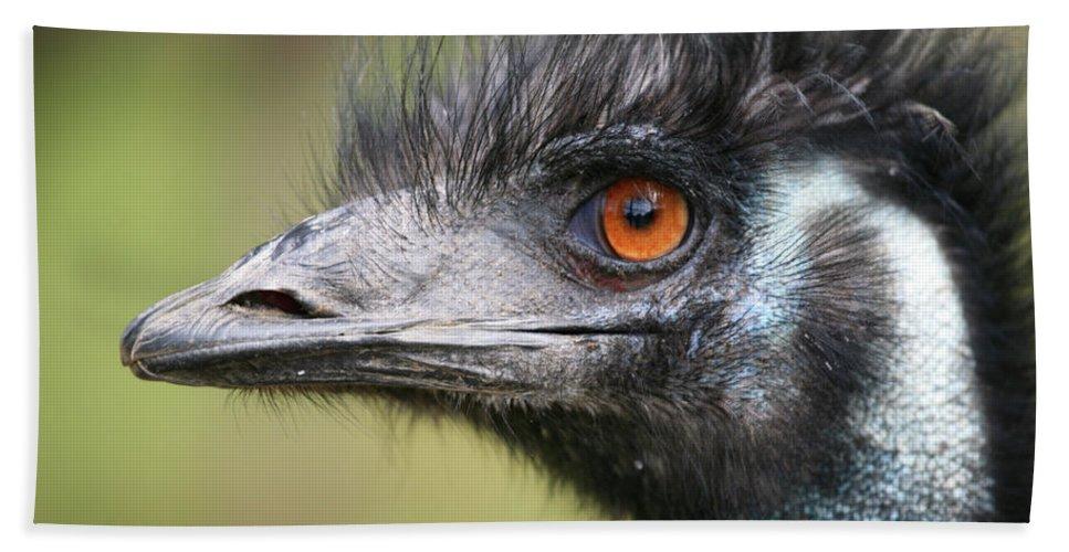 Emu Beach Towel featuring the photograph Emu by Karol Livote