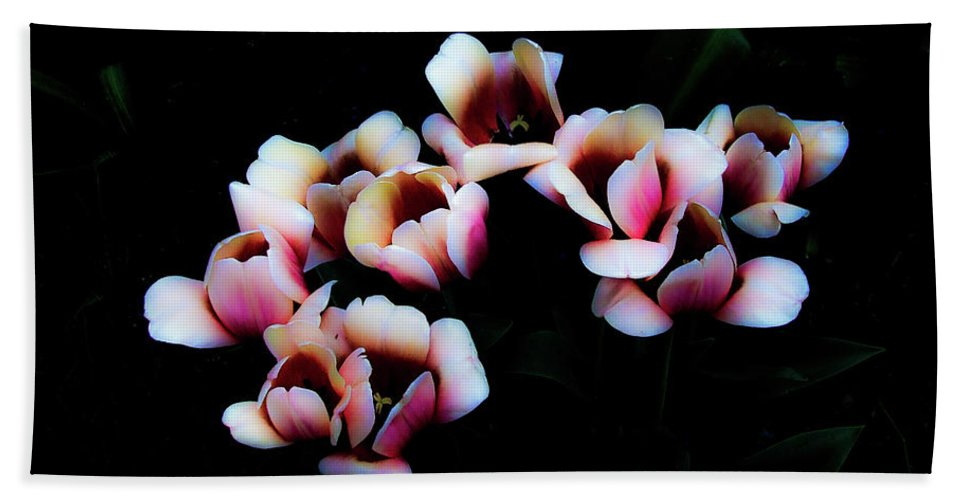 Tulip Beach Towel featuring the photograph Ethereal Tulips 2 by Frances Hattier