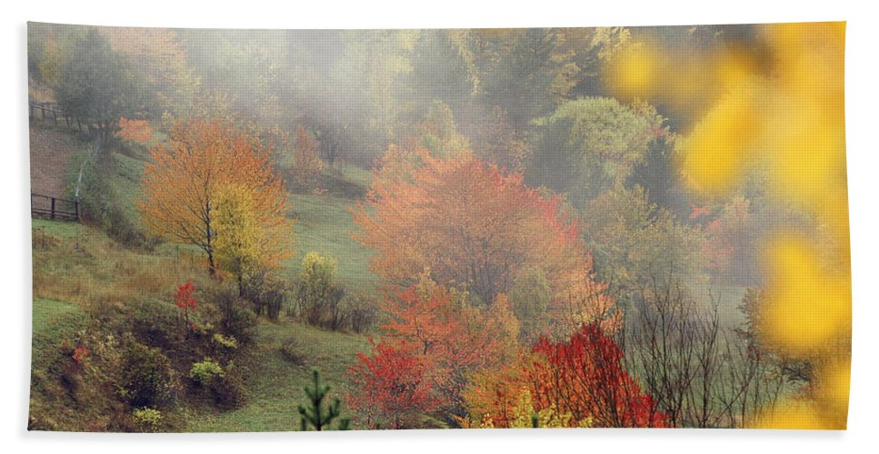 Fall Beach Towel featuring the photograph Fall Colours by Ayhan Altun